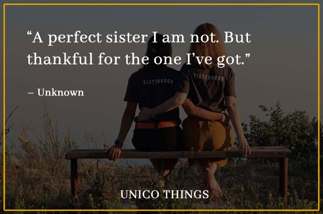 Funny Sister Quotes perfect sister