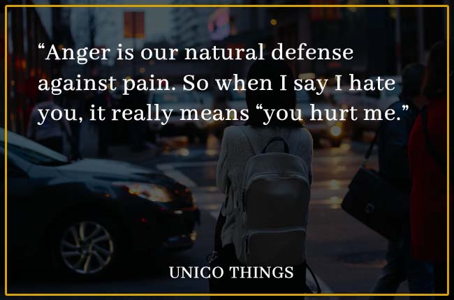101 Best Hurt Quotes And Being Hurt Sayings With Images 2020